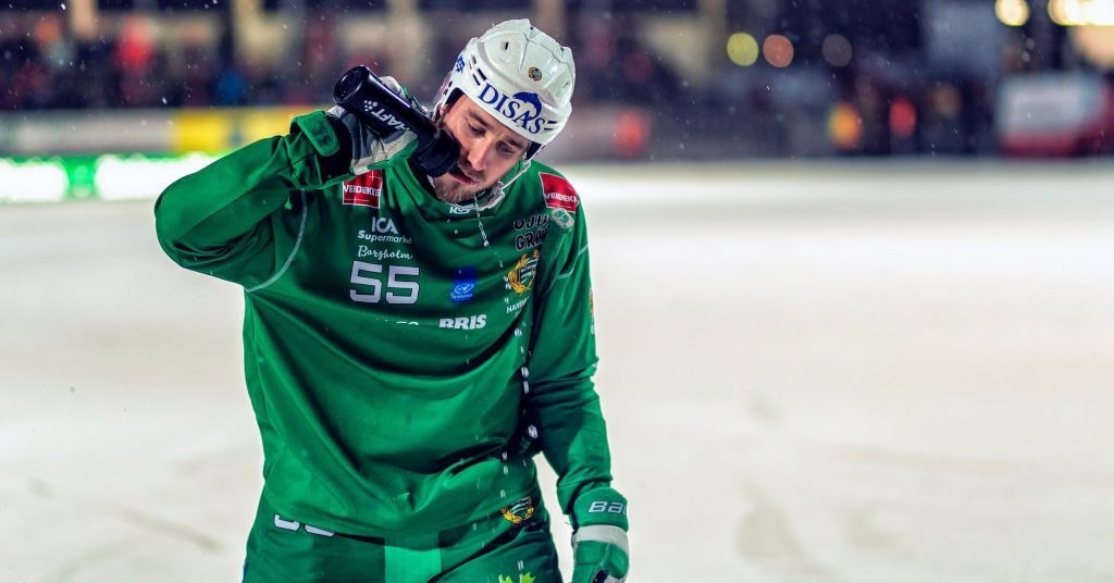 Robert Rimgård hammarby, Robert Rimgård hammarby bandy, Hammarby bandy