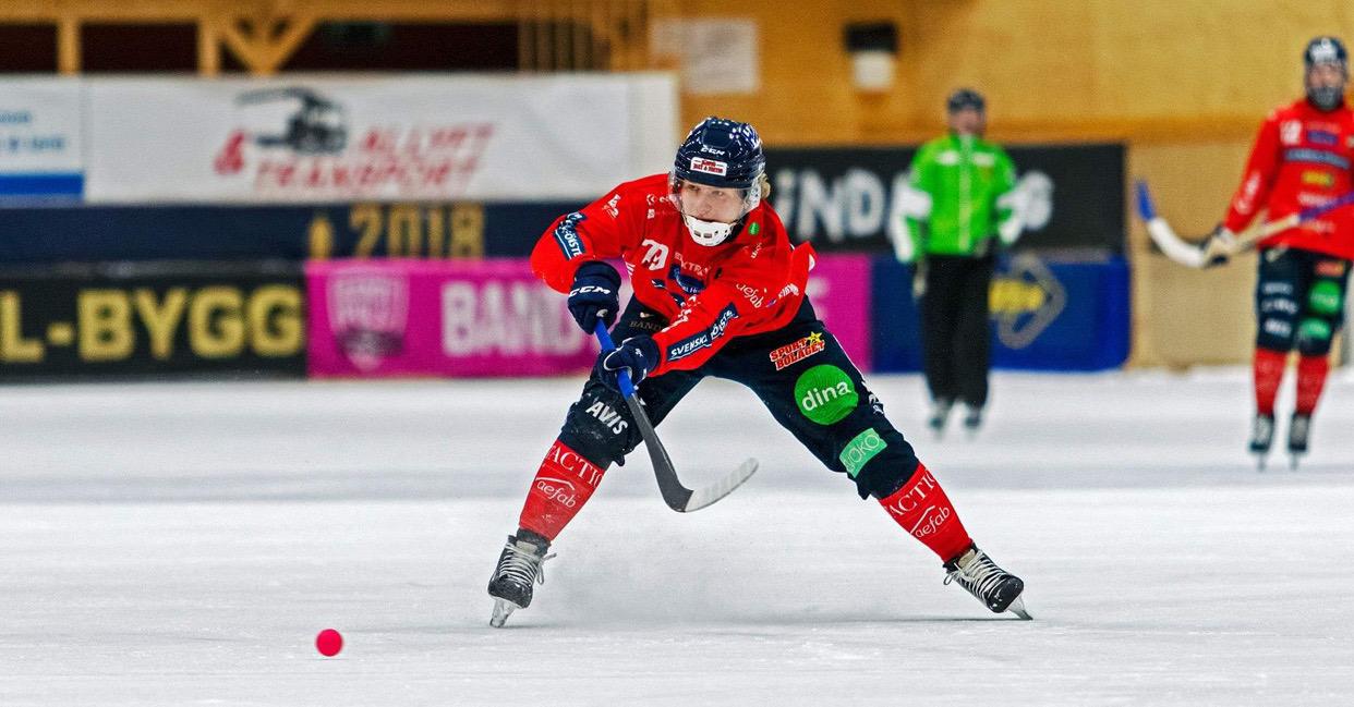 Robin Öhrlund bandy, Robin Öhrlund lämnar Edsbyn, Robin Öhrlund Gripen Trollhättan, Robin Öhrlund bandy, bandy
