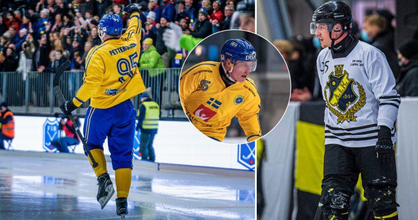Erik Pettersson bandy, Erik Pettersson Årets spelare, Aik bandy